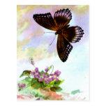 Mariposa bonita del vintage tarjeta postal