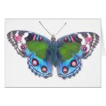 Mariposa bonita multicolora tarjeton