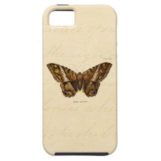 Mariposa borrosa de la plantilla de la polilla de iPhone 5 coberturas