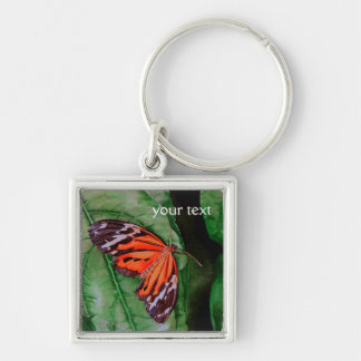 Mariposa brasileña anaranjada y negra llavero cuadrado plateado