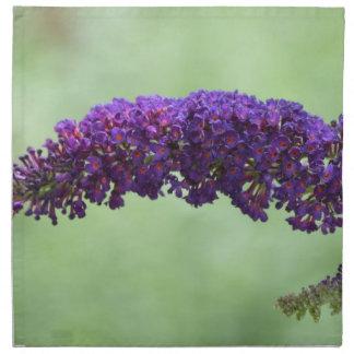 Mariposa Bush Servilletas Imprimidas