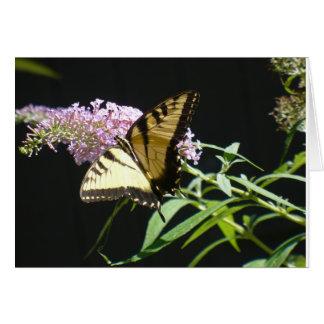 Mariposa cad tarjeta pequeña