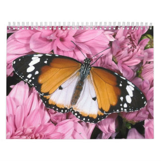 mariposa calendarios de pared
