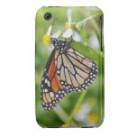 Mariposa Case-Mate iPhone 3 Protectores
