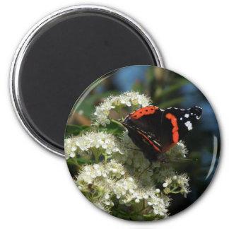 Mariposa colorida imán redondo 5 cm