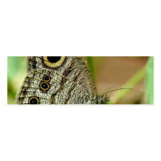Mariposa común de Fivering Satyrinae Tarjetas Personales