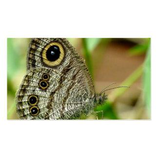 Mariposa común de Fivering Satyrinae Tarjeta De Visita