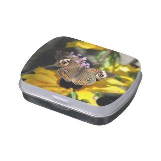 Mariposa común del castaño de Indias Jarrones De Caramelos