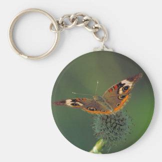 Mariposa común del castaño de Indias Llaveros Personalizados
