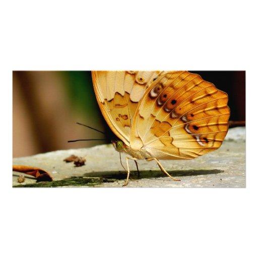 Mariposa con base del cepillo rústico tarjeta personal con foto