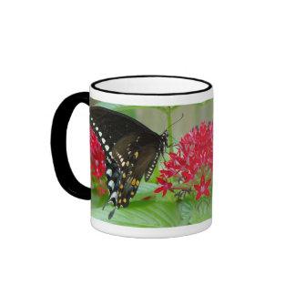 Mariposa con la taza roja de las flores