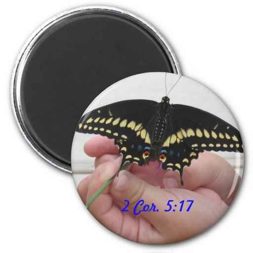 Mariposa, corazón 2. 5:17 imán