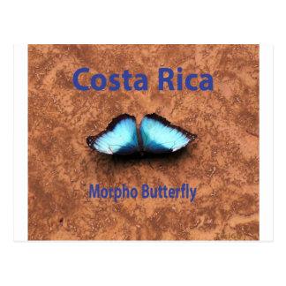 Mariposa Costa Rica de Morpho Postales