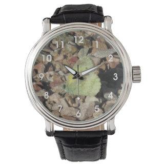 Mariposa de azufre delicada reloj