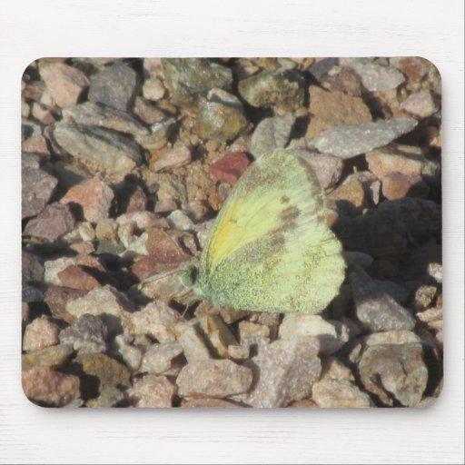 Mariposa de azufre delicada tapete de raton