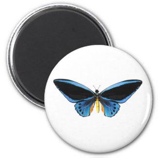 Mariposa de Birdwing Imán Redondo 5 Cm
