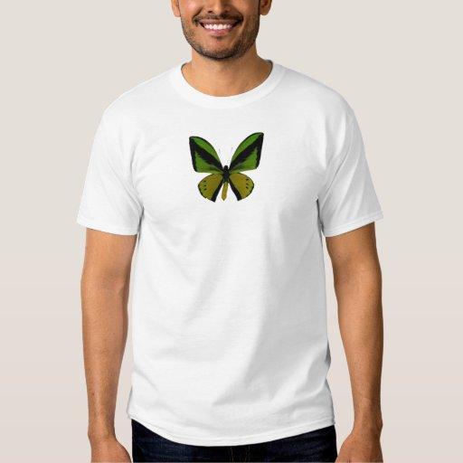 Mariposa de Birdwing Poleras