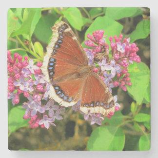 Mariposa de Brown con los puntos azules en lilas Posavasos De Piedra