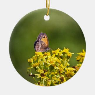 Mariposa de Brown del prado en las flores del ragw Adornos De Navidad