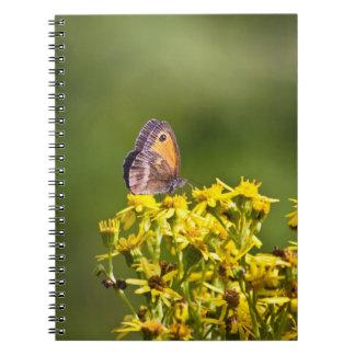 Mariposa de Brown del prado en las flores del ragw Libretas Espirales