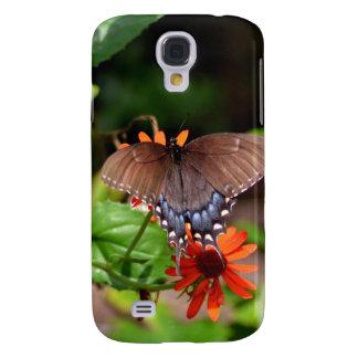Mariposa de Brown Swallowtail