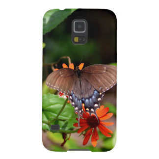 Mariposa de Brown Swallowtail Fundas Para Galaxy S5
