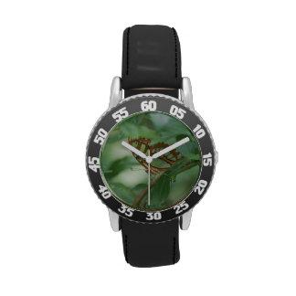 Mariposa de Camoflauged Relojes