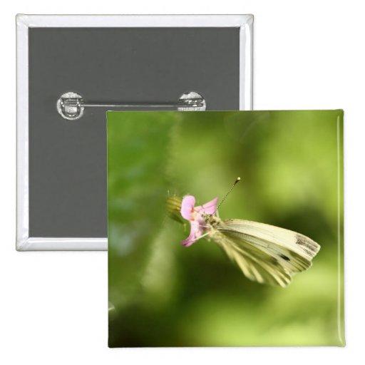 mariposa de col en wildflower rosado pin cuadrada 5 cm