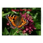 Mariposa de concha tarjeta de felicitación