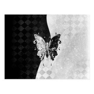 Mariposa de dos tonos tarjeta postal