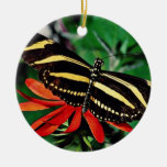 Mariposa de la cebra en la flor llameante mexicana ornamento para arbol de navidad