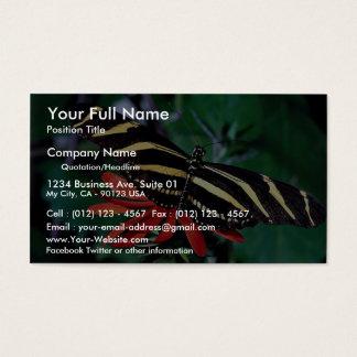 Mariposa de la cebra en la flor llameante mexicana tarjeta de negocios