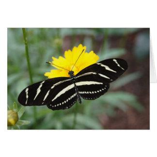 Mariposa de la cebra tarjeta pequeña