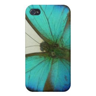 Mariposa de la Florida iPhone 4 Protector