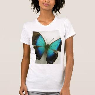 Mariposa de la Florida Camisetas