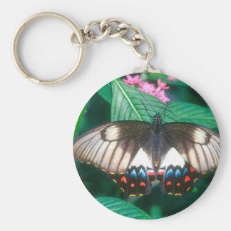 mariposa de la huerta de las mariposas llavero personalizado