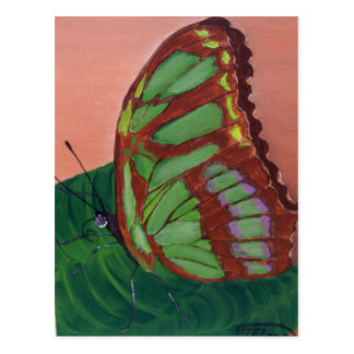 Mariposa de la malaquita - pintura de acrílico postales
