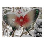 Mariposa de la nieve tarjeta postal