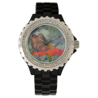 Mariposa de la reina en el girasol mexicano relojes de mano