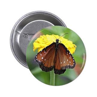 Mariposa de la reina pin