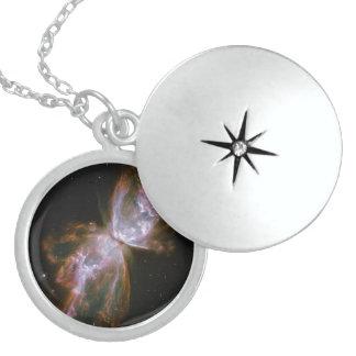 Mariposa de la supernova dijes
