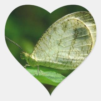 Mariposa de Leptosia Nina de la psique Calcomanía De Corazón Personalizadas