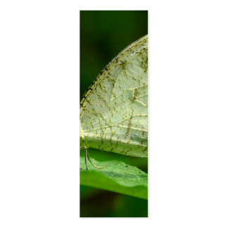 Mariposa de Leptosia Nina de la psique Plantillas De Tarjetas Personales