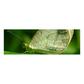 Mariposa de Leptosia Nina de la psique Plantilla De Tarjeta De Visita