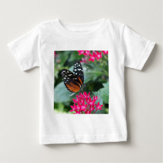 Mariposa de Longwing del tigre Playeras