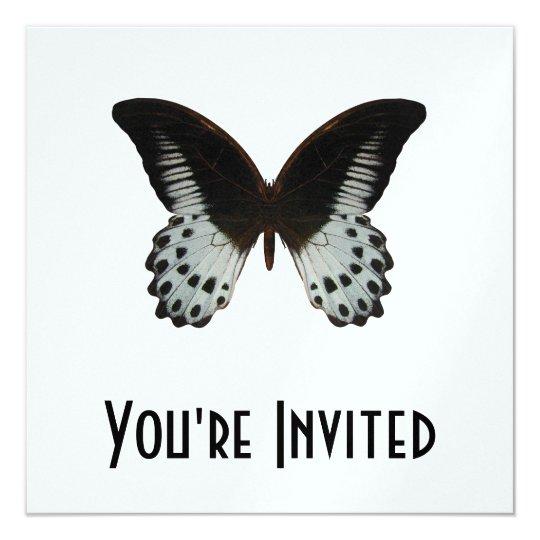 """Mariposa de mármol de Swallowtail Invitación 5.25"""" X 5.25"""""""
