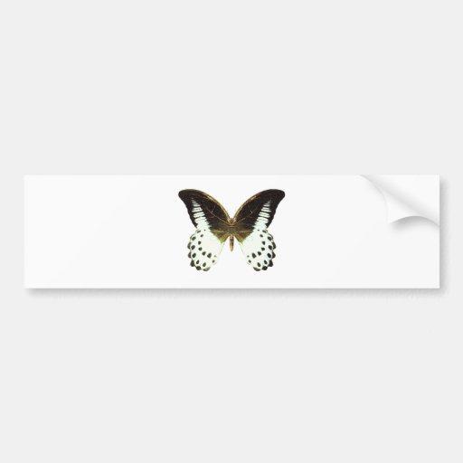 Mariposa de mármol de Swallowtail Pegatina Para Auto