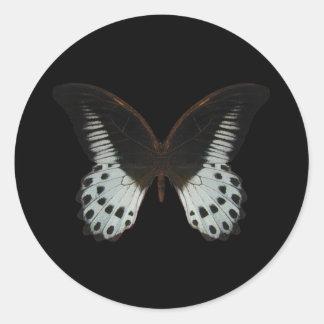 Mariposa de mármol de Swallowtail Pegatina Redonda