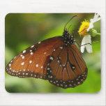 Mariposa de monarca alfombrilla de raton