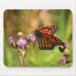 Mariposa de monarca alfombrillas de ratones